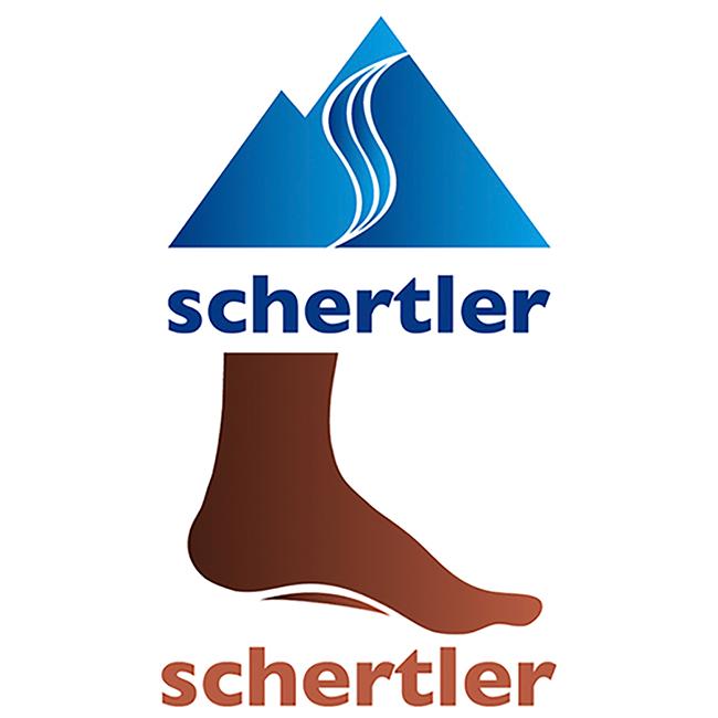 Schuh Schertler